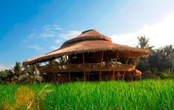 The Green School, Bali