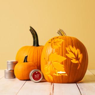 Soy Delicious Pumpkins