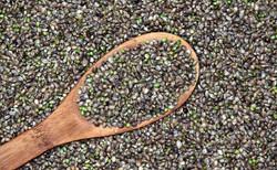 SeedSpoon.jpg