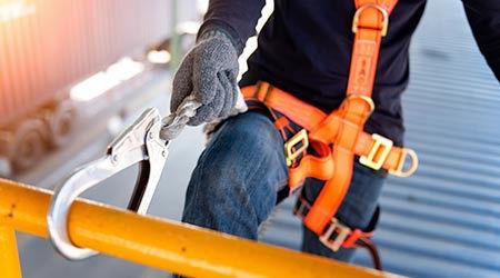 43752-roof-harness.jpg