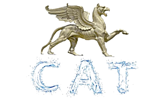 cat%20banner%20one_edited.png