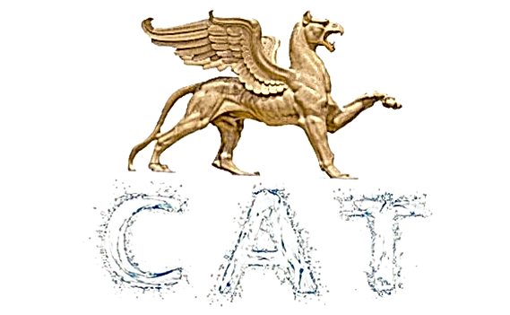 cat%2520banner%2520one_edited_edited.png