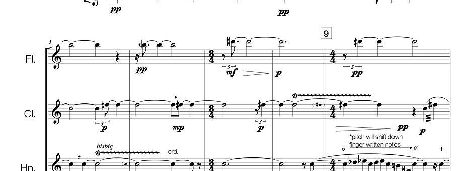 Stillness left from empty husks (flute + clarinet + horn in F)
