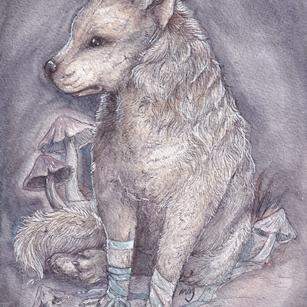 Leucistic Hyena