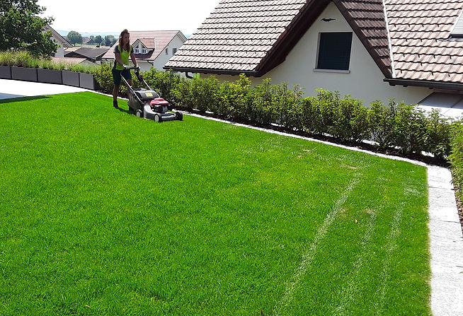 kochjoho.ch_Gartenpflege.jpg