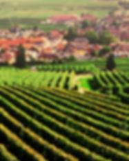 riverside-dining-burgundy-france-extreme