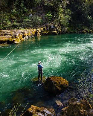 facebook-Linked_Image___WRC_North_Umpqua