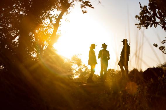 Singita-Lebombo-Lodge-Bush-walk-4.jpg
