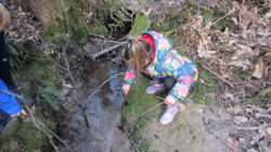Fishing in the stream