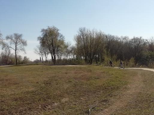 """""""Parco delle bici"""" is the new """"boschetto della droga"""