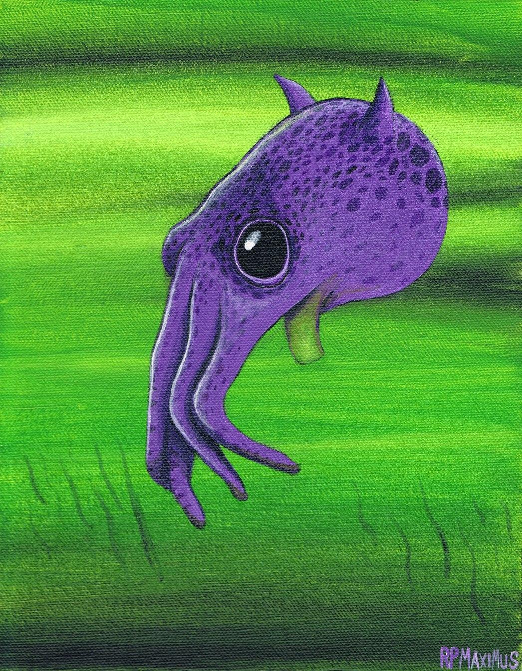 Squiddage