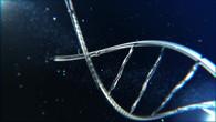 DNA Visualization V4.mp4