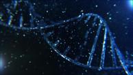 DNA Visualization V2.mp4