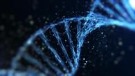 DNA Visualization V1.mp4