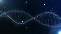 DNA Visualization V5.mp4