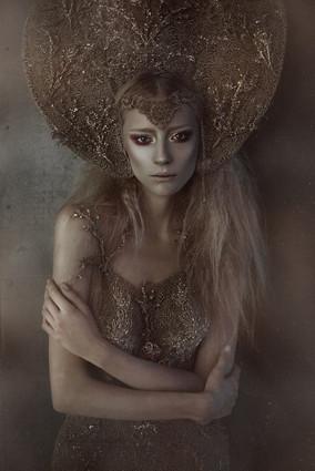 The Secret of Gold Fairy