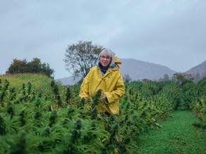 Farmer Spotlight: Meg Southerland