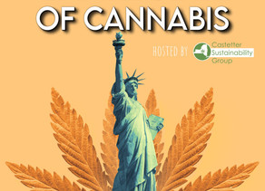 Our New Podcast Empire State of Cannabis