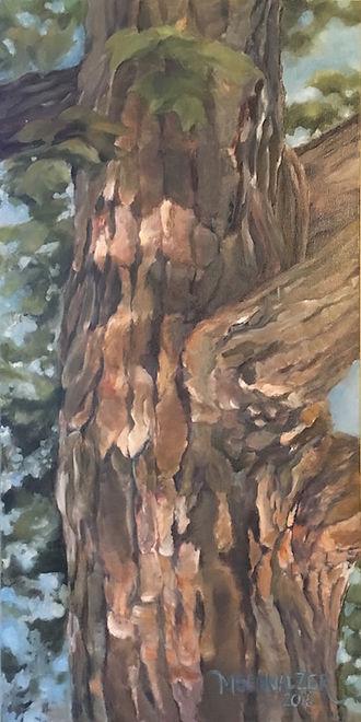 Schnalzer_Melinda_Dappled Tree.jpg