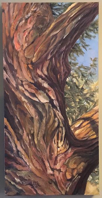 Schnalzer_Melinda_Stretching tree.jpg