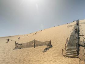 Pyla-sur-Met - Une dune sortie de nulle part