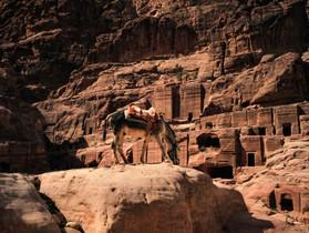 Road Trip en Jordanie - La Route du Roi 30 ans après