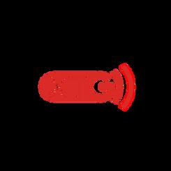 BVMG media relations i DTP dla XTG