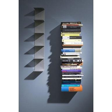 Librero de Pared Virtual / Virtual Bookcase