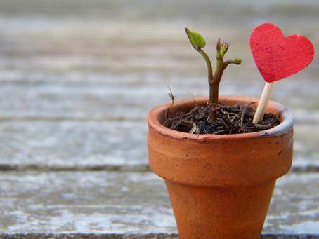 Beteiligung und Kinderrechte bei der Sommerakademie - Der Beginn einer wunderbaren Freundschaft