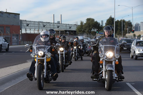 Explore Melbourne with a group of Harley Davidsons