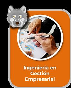 Ingenieria en Gestión Empresarial 2.png