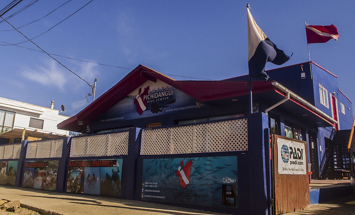 Best dive center in Chile