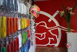 Antman Cutom Trix helmet paint design and accessories bufferz