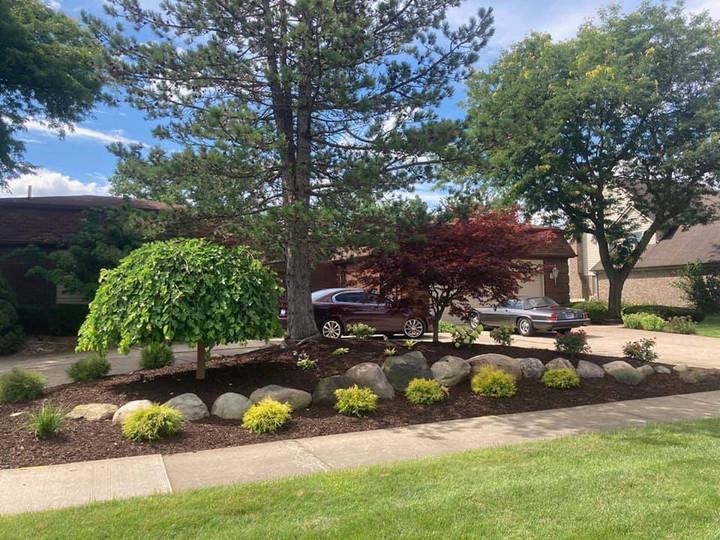 Tree care landscaping Grosse Ile MI