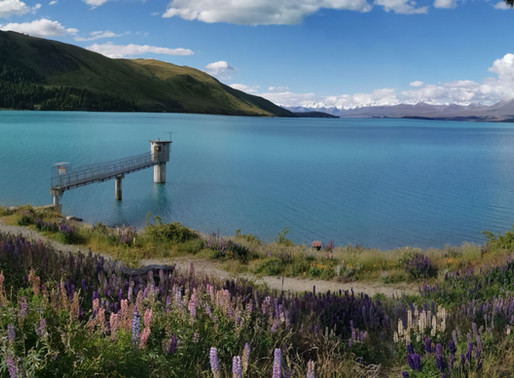 Queenstown to Lake Tekapo and back in a day...
