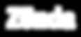 logo-zonda.png