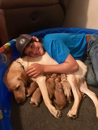 cooper with puppies.jpg