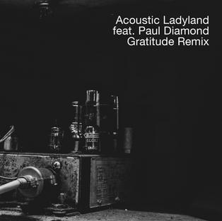 Acoustic Ladyland Remix