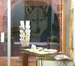 Loup reflet