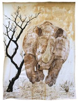 Rhinoceros 280x215