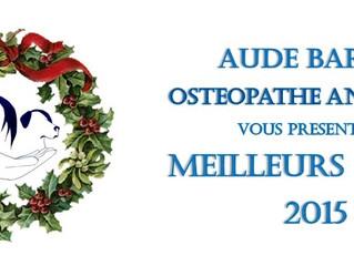 Aude Barbet Ostéopathe Animalier vous souhaite une excellente année 2015
