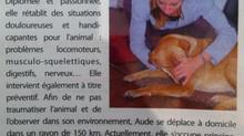 Installation d'une Ostéopathe Animalier à Verrières le Buisson