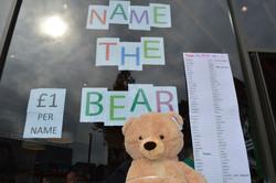 Name the bear