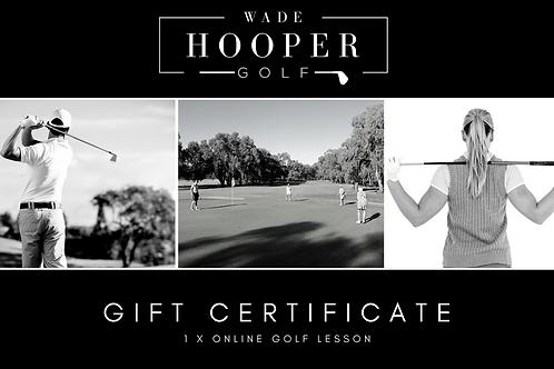 Online Golf Lesson