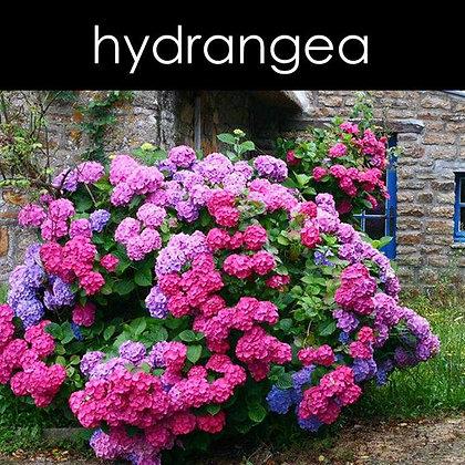 Hydrangea Wax Melts