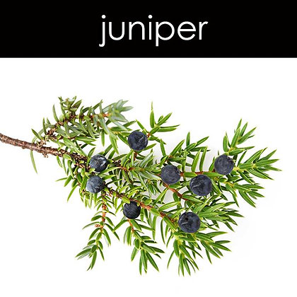 Juniper Candle - 8 oz White Tumbler