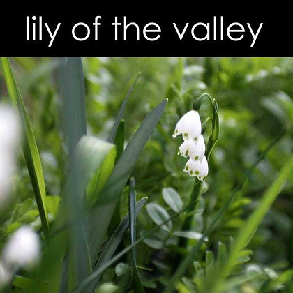 Lily of the Valley Candle - 8 oz White Tumbler