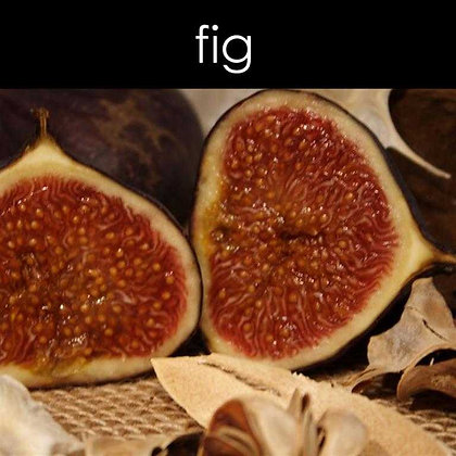 Fig Wax Melts