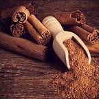 clipart - cinnamon.jpg