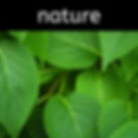 button - nature.jpg